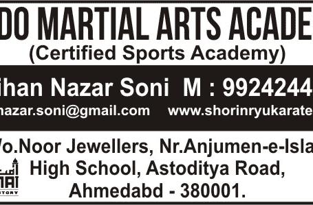 Budo Martial Arts Academy