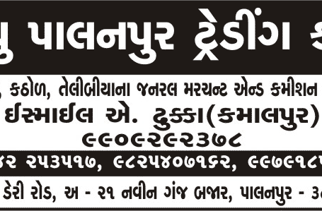 New Palanpur Trading Co